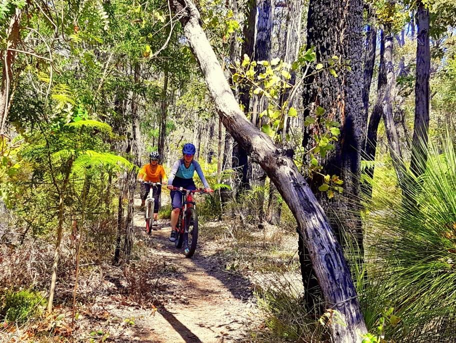 Arklow Trail Network