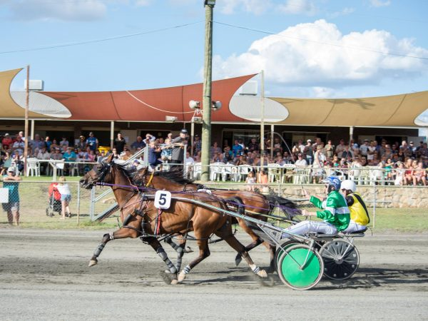 Collie Harness Racing @ Collie Trotting Club | Collie | Western Australia | Australia